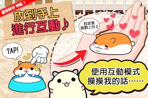 Screenshot 3: 倉鼠系列