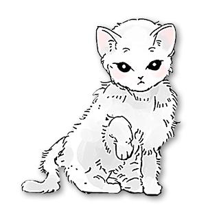 Icon: 貓咪和紙箱