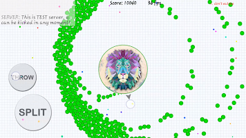 Screenshot 2: Blob io - Divide and conquer