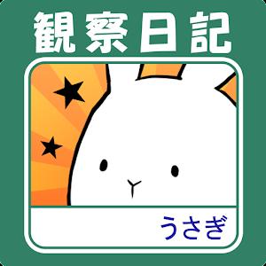 Icon: Is This Rabbit?