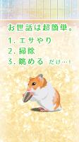 Screenshot 2: 倉鼠育成