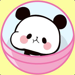 Icon: 모찌모찌 팬더 Panda Collection Mochimochipanda