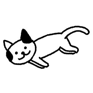 Icon: 貓咪真的很可愛