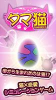 Screenshot 1: タマ猫 ◆猫 x 恋愛シミュレーションゲーム