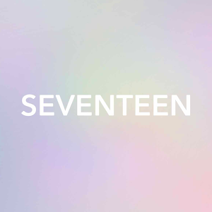 Icon: SEVENTEEN LIGHT STICK VER2