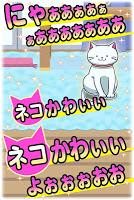 Screenshot 1: 貓咪攝影