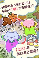 Screenshot 1: みっちりねこ研究所