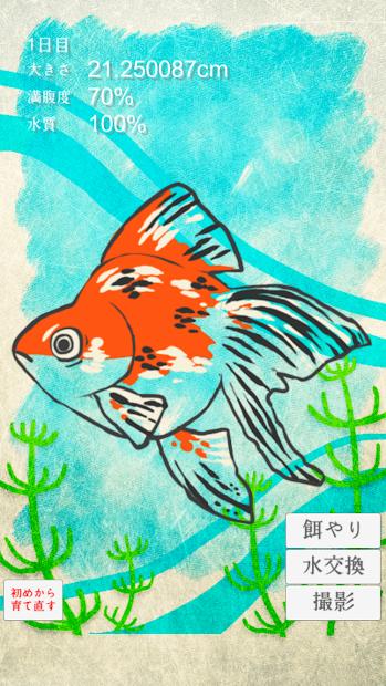 治癒系金魚育成遊戲