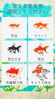 Screenshot 1: 癒しの金魚育成ゲーム