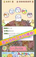 Screenshot 2: Mitchiri Neko Dash!