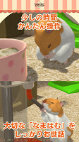 Screenshot 2: Life with hamster