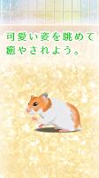 Screenshot 3: 倉鼠育成